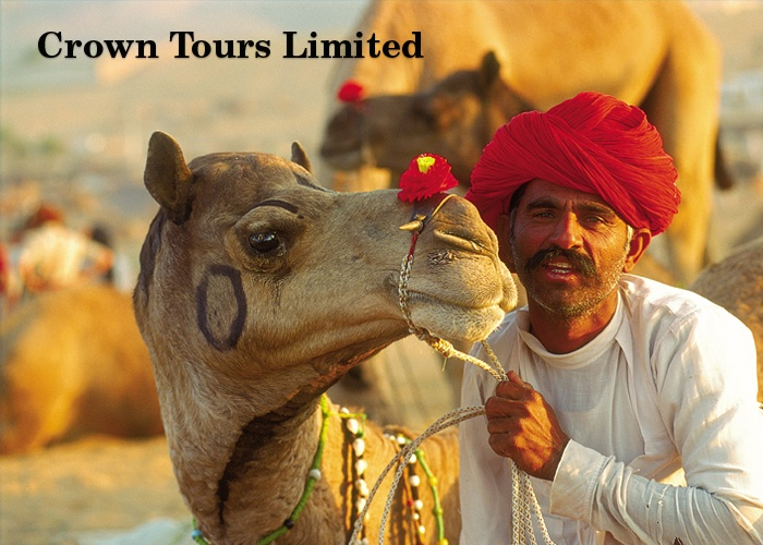 Crown Tours Ltd.